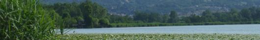 Parco Valle Lambro - L'istituzione